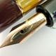 Pelikan 101N Tortoise-shell | ペリカン
