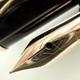 Pelikan 400NN Brown/Tortoise   ペリカン