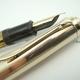 Plikan 600N & 650 Pencil Solid Gold Cap/Tortoise Set | ペリカン