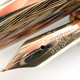 Soennecken 111 Superior Light Tortoise-shell Herringbone | ゾェーネケン